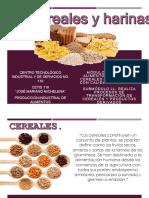 Cereales y Harinas-1