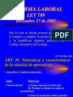 Reforma Laboral 789 2002 Contratos de Aprendizaje
