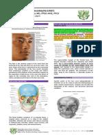 10. Maxillofacial Injuries