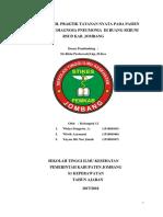 TN BU RIRIN (PNEUMONIA ) fix.docx