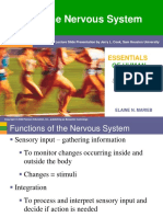 ELAINE_N._MARIEB_The_Nervous_System.pdf