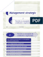 Mng Strategic