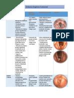 patologias voz.docx