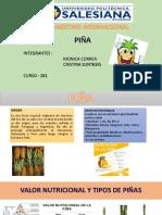 PIÑA(1)