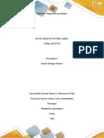 Actividad 2 Fase 3 - Hipótesis y Diagnóstico - Elvis Tavera