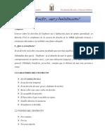informe civil - copia.docx