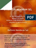 STRUKTUR MEMBRANE SEL.pptx