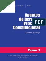 Apuntes del Derecho Procesal Constitucional