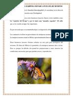 Que Significa La Mariposa Monarca en El Día de Muertos