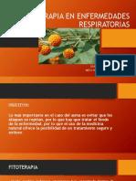 Decima Sesion - Fitoterapia en Emfermedades Respiratorias