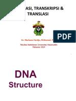 Replikasi, Transkripsi, Dan Translasi