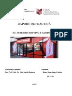 raport Practica Ects
