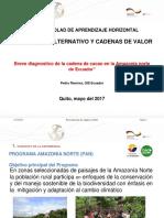 Breve Diagnostico Cadena de Valor de Cacao en La Amazonia Norte de Ecuador