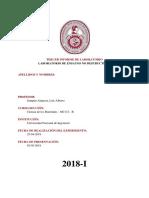 Informe N°3 - Ensayos no destructivos