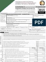 Document 2 Epi Tax Form 2015