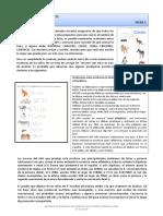 0a5ac8-sistema-de-escritura-y-reflexiones-ortograficas-fichas-docentes.pdf