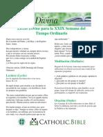 Lectio Divina 2019 Ot29 Spanish