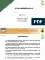 Presentacion Lag. Anaerobias