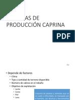 Sistema de Producción Caprina