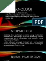 sitoteknologi