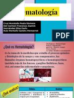 Hematologia 6A
