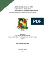 TAREA II RESUMEN FACILIDADES DE PRODUCCIÓN  (JUAN PABLO RODAS).pdf