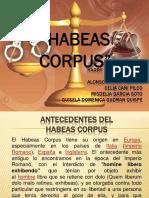 tribunal constitucional - accion de amparo- habeas corpus.pptx