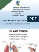 Histología Del Aparato Respiratorio Inferior