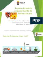 Presentación Proceso Industrial Extracción CPO Y PKO v 1.0
