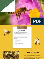 Presentación de abejas