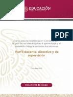 perfiles NEM.pdf