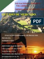 Evaluacion Empresarial de Proyectos. Estudio de Mercado
