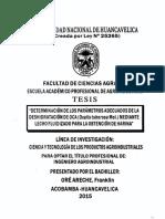 TP - UNH AGROIND  0031.pdf