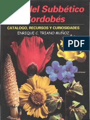 oenanthe crocotta medicina homeopática para la diabetes