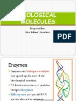 BIOLOGICAL MOLECULES 2.pptx