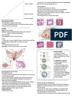 Chapter 22 the Female Reproductive System