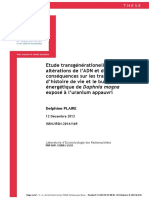 Etude transgénérationelle des  altérations de l'ADN et de leurs  conséquences sur les traits  d'histoire de vie et le budget  énergétique de Daphnia magna