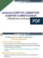 Sesión 9_Plat Carbonatadas