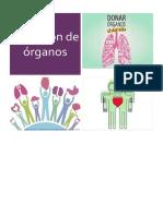 Donación de órganos.docx