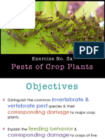 Exer No. 3_Pests of Crop Plants _ Their Natural Enemies