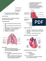 Cardiovascular System Heart Reviewer