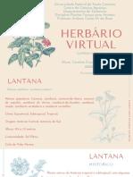 Herbário Virtual Lantana