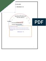 Maldonado Juan 2 Informe Quimica Sector Agricola[1] (1)