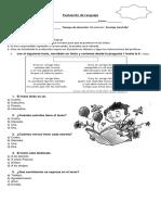 Evaluacion Lenguaje Tercero Basico