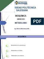 5. Metabolismo