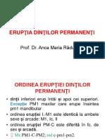 3. ERUPŢIA DP, MORFOLOGIA DT.ppt