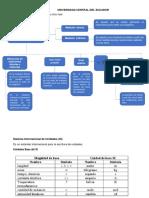 FUNDAMENTO CONCEPTUAL  MEDICIONES DIRECTAS E INDIRECTAS 1.pdf