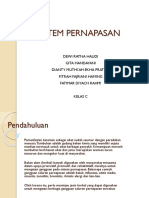 PPT FITO new.pptx