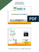 Kimbell Wisc-V Nspa Handout