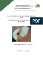 PLAN DE NEGOCIOS CUYES MAYUNMARCA.doc